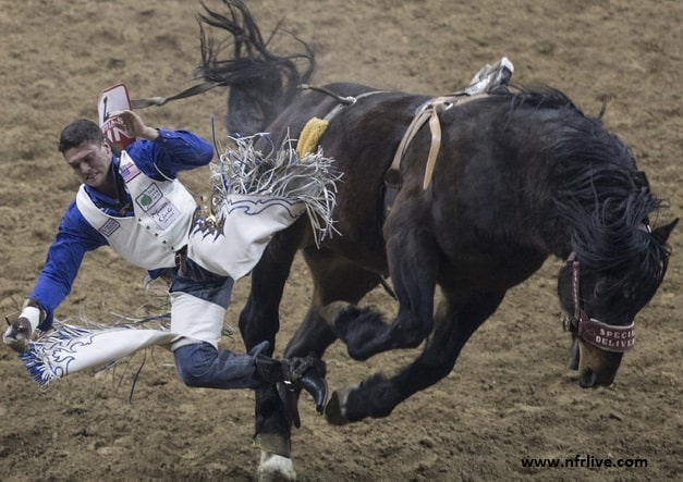 National Finals Rodeo Photo
